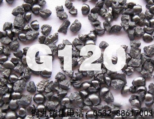 G120铸钢sha